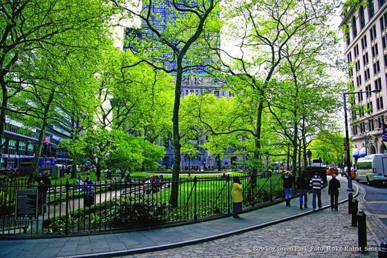 zeleniot-del-na-njujork-8