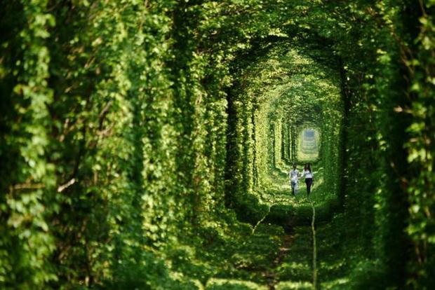 tunelot-na-vljubenite-prirodna-ubavina-koja-mora-da-se-vidi-1