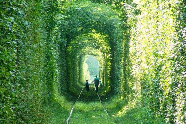 tunelot-na-vljubenite-prirodna-ubavina-koja-mora-da-se-vidi-2