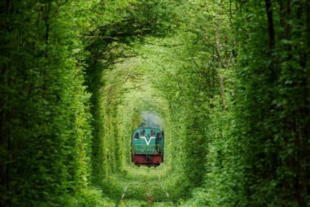 tunelot-na-vljubenite-prirodna-ubavina-koja-mora-da-se-vidi-3