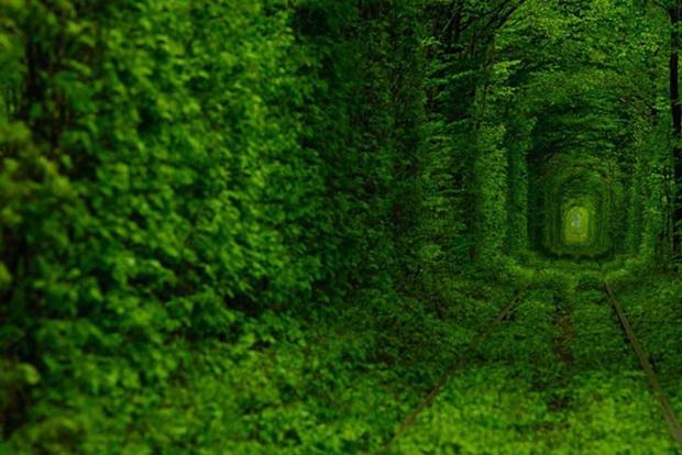 tunelot-na-vljubenite-prirodna-ubavina-koja-mora-da-se-vidi-5
