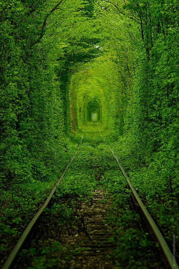 tunelot-na-vljubenite-prirodna-ubavina-koja-mora-da-se-vidi-8