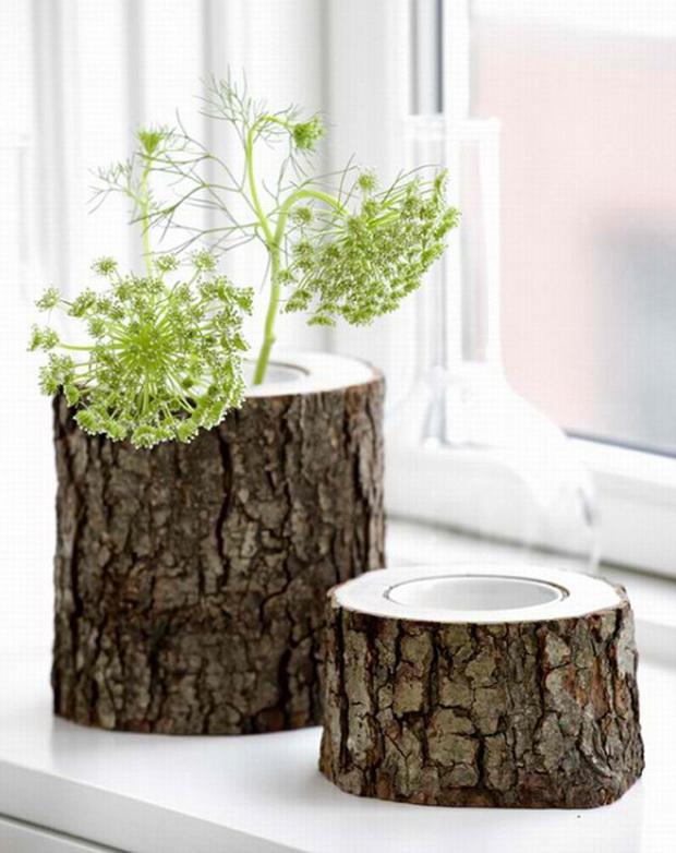 kako-da-zasadite-cveke-vo-star-trupec-od-drvo-12