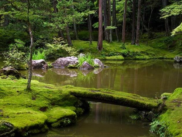 zen-umetnost-tajnite-na-japonskite-gradini-4.jpg