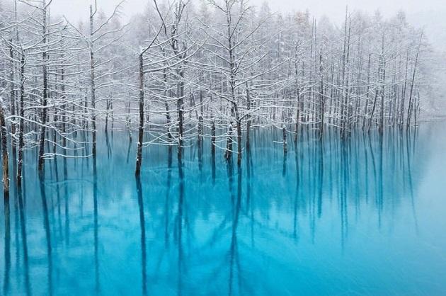 10te-najubavi-gletki-kreirani-od-sneg-i-mraz-10.jpg