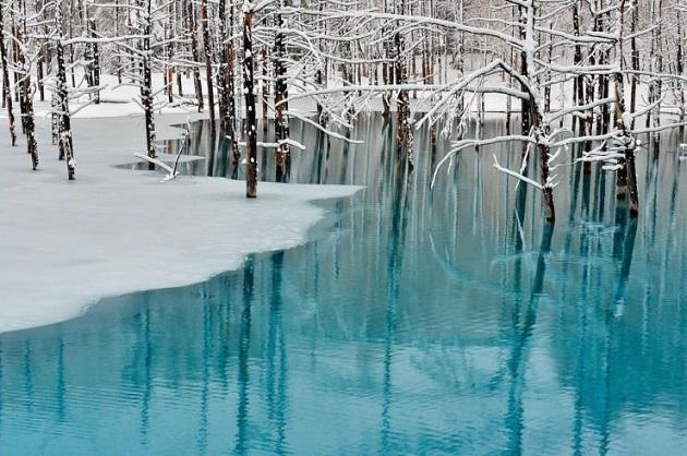 10te-najubavi-gletki-kreirani-od-sneg-i-mraz-11.jpg