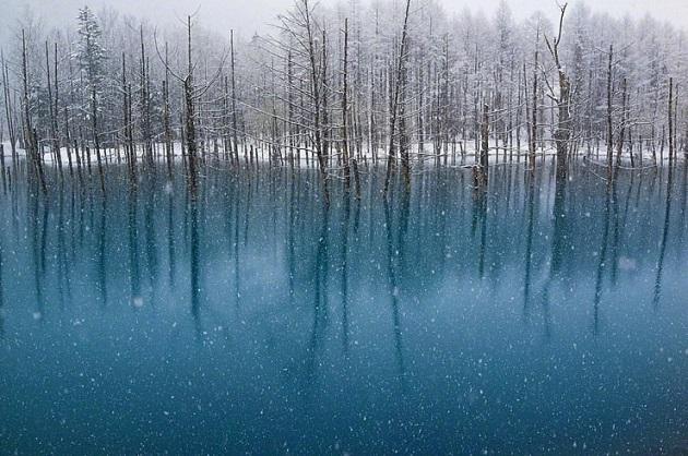 10te-najubavi-gletki-kreirani-od-sneg-i-mraz-12.jpg