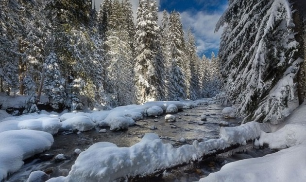 10te-najubavi-gletki-kreirani-od-sneg-i-mraz-9.jpg
