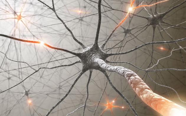 nevrokozmetika-pametna-kozmetika-na-noviot-vek-1.jpg