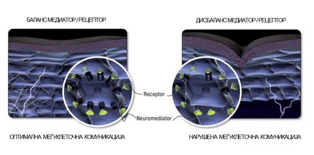 nevrokozmetika-pametna-kozmetika-na-noviot-vek-3.jpg