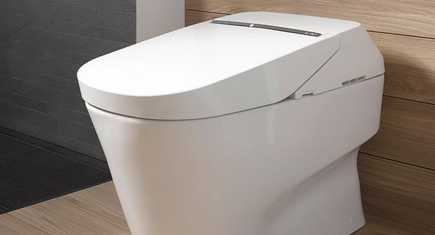zoshto-ovaa-toaletna-shkolka-chini-10-000-dolari