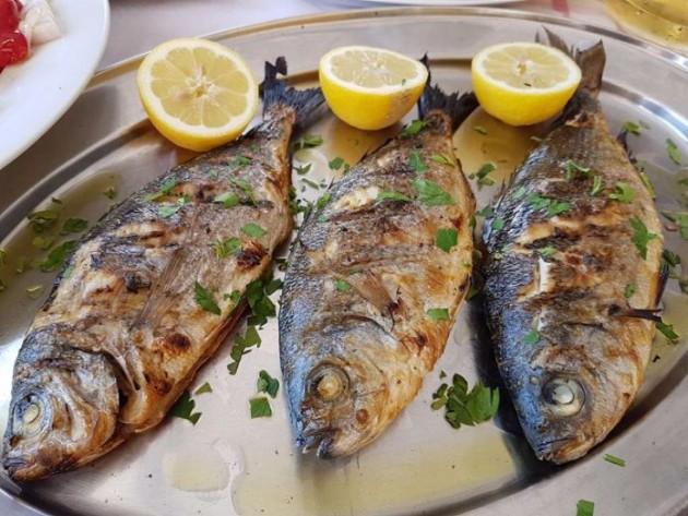 for Manger pour poisson aquarium