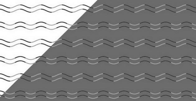 opticka-iluzija-na-koja-sekoja-linija-e-ista-ne-veruvate-01.jpg