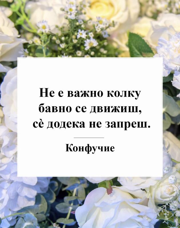 Motivaciski-citati-na-poznatite-za-momentite-koga-mislite-deka-nemate-povekje-sila_3.jpg