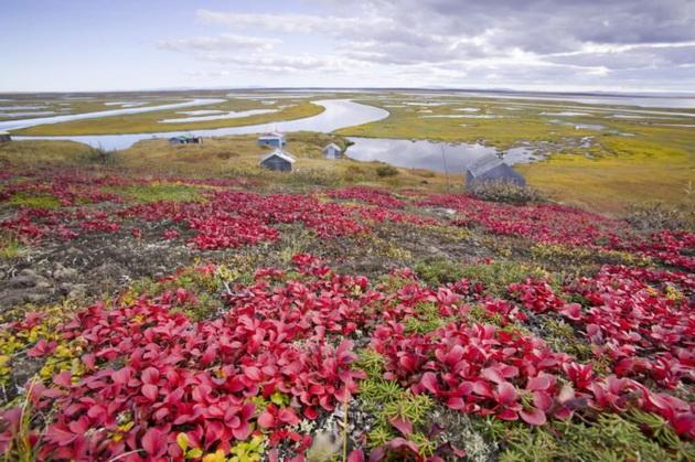 13-ostrovi-koi-se-ocekuva-da-isceznat-vo-narednite-80-godini-13.jpg