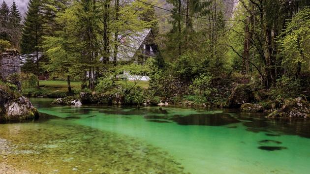 zoshto-slovenija-e-ekoloshki-najsvesna-zemja-vo-svetot-03.jpg