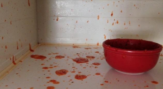 hrana-shto-ne-bi-trebalo-da-ja-zagrevate-vo-mikrobranova-pechka-06.jpg